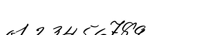 Sigmund Freud Typeface PRO Font OTHER CHARS