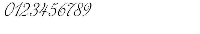 Siren Script II Regular Font OTHER CHARS