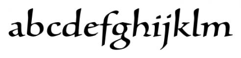Silentium� Pro Roman II Font LOWERCASE