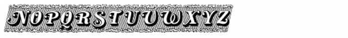 Silverland Swash SC Font UPPERCASE