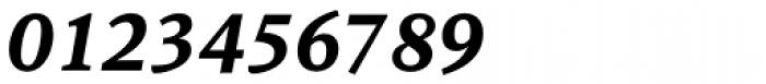 Sina Nova ExtraBold Italic Font OTHER CHARS