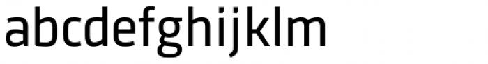 Sinews Sans Pro Regular Font LOWERCASE