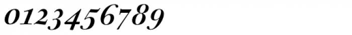 Sirenne Seventy Two MVB Swash Italic Font OTHER CHARS