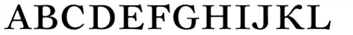 Sirenne Text MVB OSF Roman Font UPPERCASE