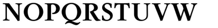 Sirius Bold Font UPPERCASE