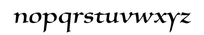 SilentiumPro-RomanI Font LOWERCASE