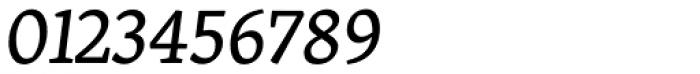 Skolar Latin Italic Font OTHER CHARS