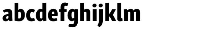 Skolar Sans Latn Compressed Eb Font LOWERCASE