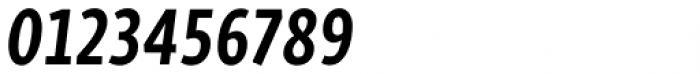 Skolar Sans PE Compressed Bold Italic Font OTHER CHARS
