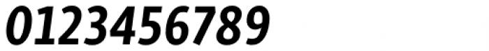 Skolar Sans PE Condensed Bold Italic Font OTHER CHARS