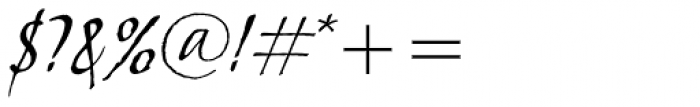 Skylark Italic Font OTHER CHARS