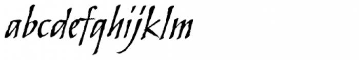 Skylark Italic Font LOWERCASE