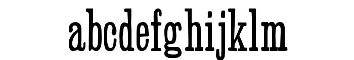 SlabSerifHPLHS Font LOWERCASE