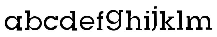 Slug Bug Open Regular Font LOWERCASE