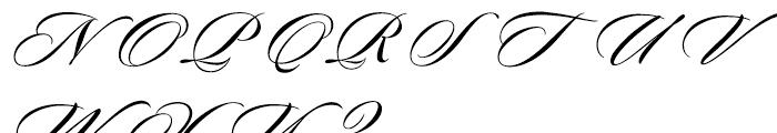 Sloop Script Medium One Font UPPERCASE