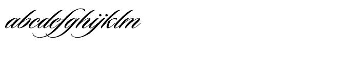 Sloop Script Medium One Font LOWERCASE