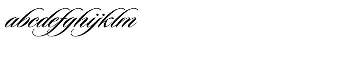 Sloop Script Medium Two Font LOWERCASE