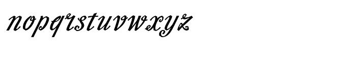 Slutsker Script Bold Font LOWERCASE