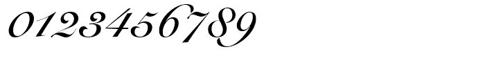 Snell Roundhand Bold Font OTHER CHARS