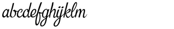 Snackbar Italic Font LOWERCASE