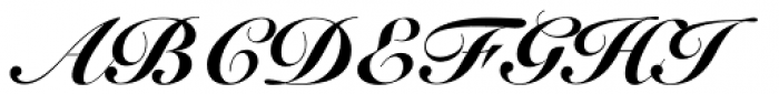 Snell Roundhand Black Script Font UPPERCASE