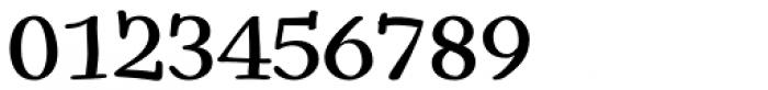Snowbird Medium Font OTHER CHARS