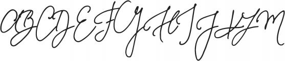 Something Exquisite Swash1 otf (100) Font UPPERCASE