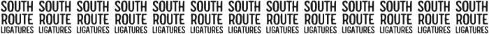 South Route Regular Ligatures otf (400) Font UPPERCASE