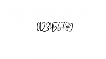 Sophisticated Signature.ttf Font OTHER CHARS