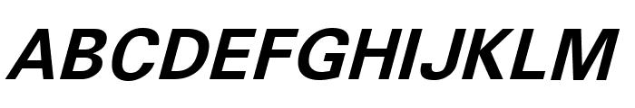 Sophia Nubian Bold Italic Font UPPERCASE