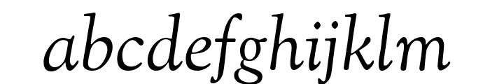 Sorts Mill Goudy TT Italic Font LOWERCASE