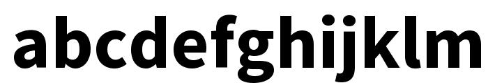 Source Sans Pro Bold Font LOWERCASE