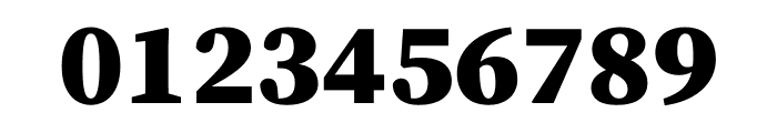 Source Serif Pro Black Font OTHER CHARS