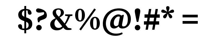 Source Serif Pro Bold Font OTHER CHARS