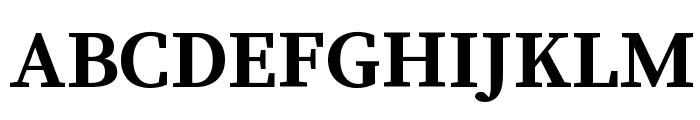 Source Serif Pro Bold Font UPPERCASE