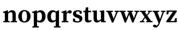 Source Serif Pro Bold Font LOWERCASE