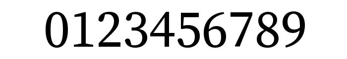 Source Serif Pro Regular Font OTHER CHARS