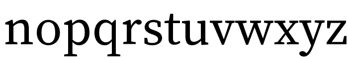 Source Serif Pro Regular Font LOWERCASE