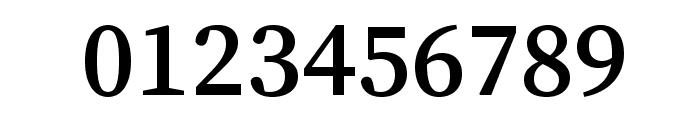 Source Serif Pro Semibold Regular Font OTHER CHARS