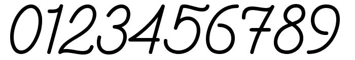 Southfilla Monoline Script Font Font OTHER CHARS