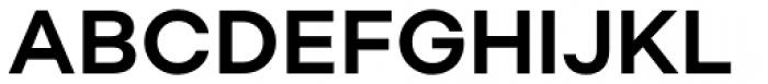 Soin Sans Neue Bold Font UPPERCASE