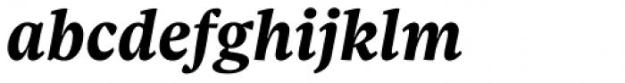 Sole Serif Caption Bold Italic Font LOWERCASE