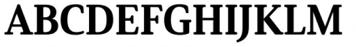 Solitas Serif Norm Ex Bold Font UPPERCASE