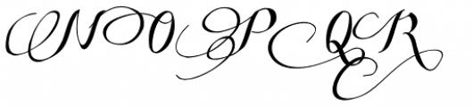 Some Weatz Swashes Font UPPERCASE