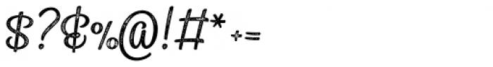 Sonder Print Script1 Font OTHER CHARS