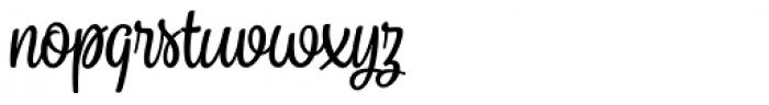 Sonder Script1 Font LOWERCASE