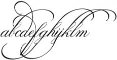 SpencerianPalmerPenmanship ttf (400) Font LOWERCASE