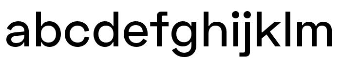Space Grotesk Medium Font LOWERCASE
