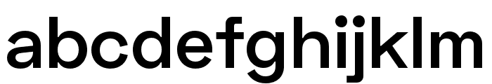 Space Grotesk SemiBold Font LOWERCASE