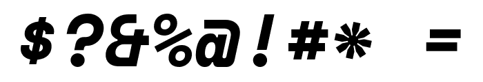 Space Mono Bold Italic Font OTHER CHARS